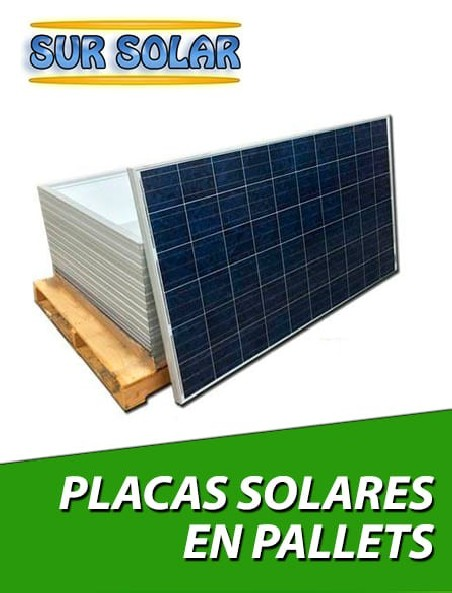 Placas Solares de 24V en Pallets